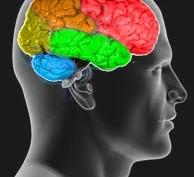 omega-3-brain