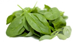 spinach-lrg