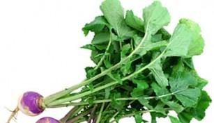 turnip-lrg