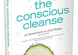 Conscious Cleanse Book