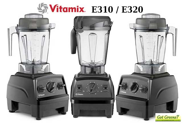 Vitamix E320 vs E310