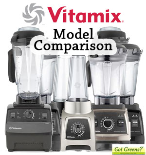 Vitamix models